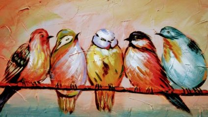 cropped-birds-of-different-colors.jpeg